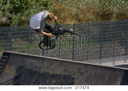 Bike Dogging
