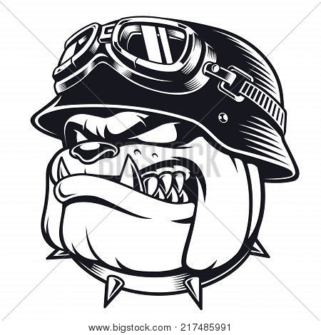 Vector face of bulldog biker with helmet. Motorcycle rider illustration. Shirt graphics.Isolated on white background.