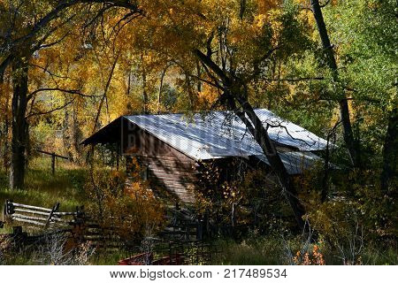 Beautiful fall landscape colors in the mountains with horses, barns and meadows