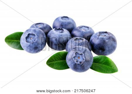 Blueberries pile of fresh blueberry isolated with clipping path