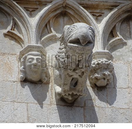 Gargoyle of Cathedral of Santa Maria. Tarragona Catalonia Spain.