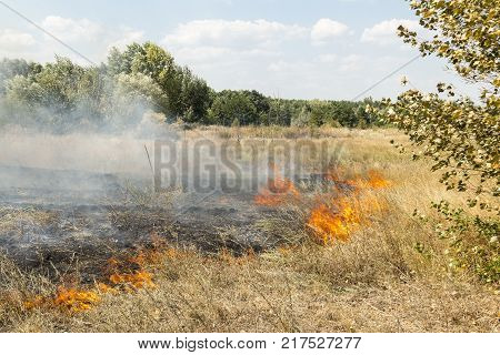Massive forest wildfire due to hot, dry and windy weather.