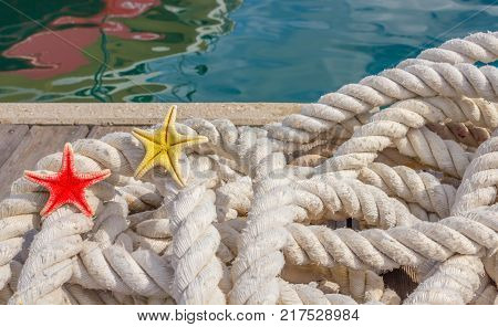 detail of a rope for mooring with two sea starfishes /a rope for mooring boats with two starfishs rested on the quay marina