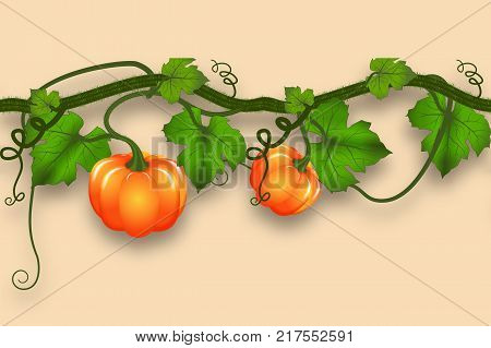 Pumpkin whip with leaves and pumpkins. Realistic seamless border for an autumn design. Vector illustration.