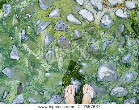 Woman feet on green stones background. Mossy stone paving texture top view photo. Ancient place in jungle trip. Tropical nature outdoor ecotourism. Green mossy paving texture. Wet stone floor banner