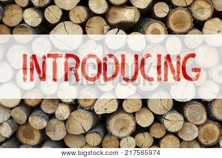Conceptual announcement text caption inspiration showing Introducing Business concept for Introduction Start Intro Beginning written on wooden background with space