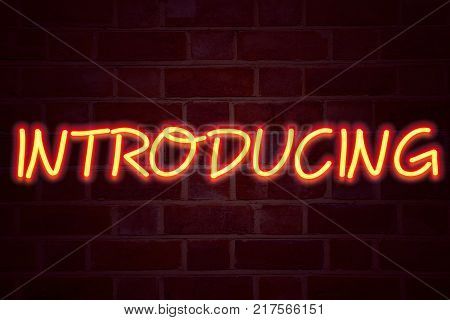 Introducing neon sign on brick wall background. Fluorescent Neon tube Sign on brickwork Business concept for Introduction Start Intro Beginning 3D rendered Front View