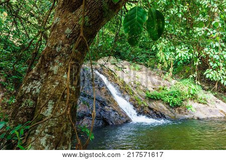 Sarika Waterfall, Khao Yai National Park - Nakhon Nayok Province, Thailand. Green Water In Foregroun