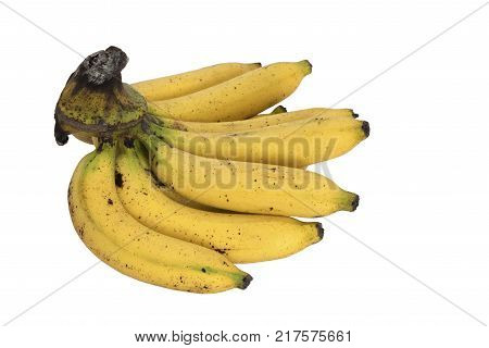 A bunch of tasty cavendish bananas isolated on white background with clipping path poster