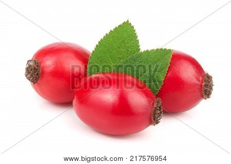 rose hip berry with leaves isolated on white background macro.