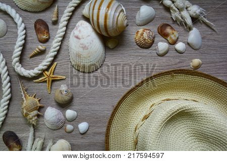 straw hat and an arrangement of seashells evoke about the adventures at sea on summer vacation
