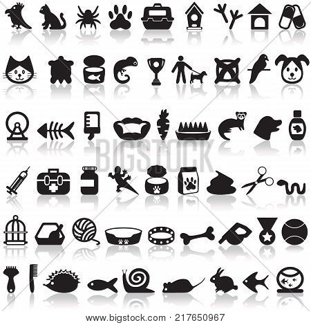 Pets icons set on a white background with a shadow