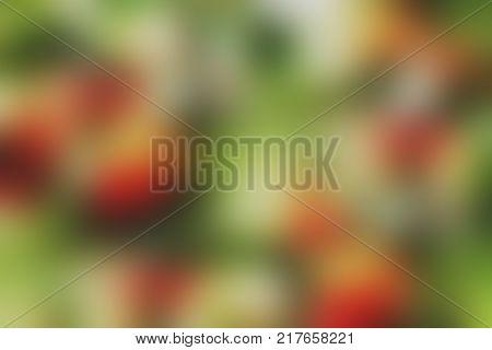 Unfocused Mistletoe Backgroung