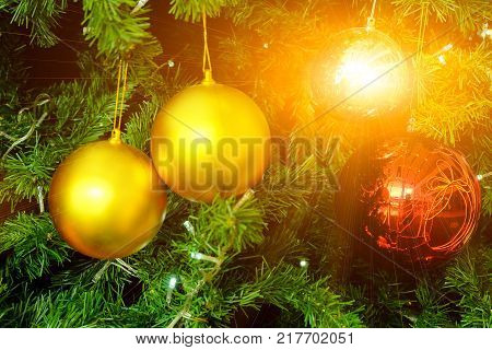 fir tree in chirstmas festivals with flares light and balls background