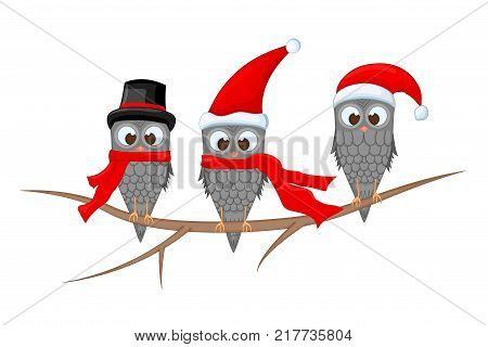 Christmas Owl Santa Hat Christmas Owl Santa Hat Tree Images