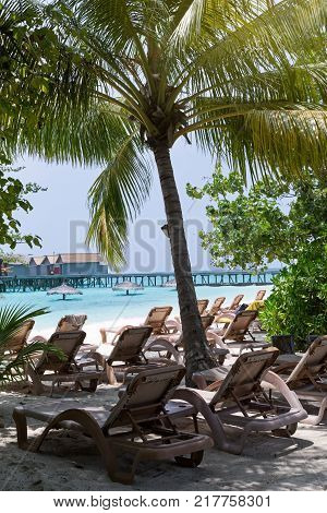 Chase lounges on sandy maldivian beach,  travel card of perfect getaway for summer vacations
