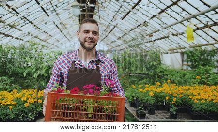 happy smiling man in apron holding box with flowers walking in greenhouse