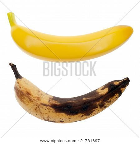 Real, spoiled banana and artificial banana