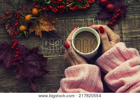Female hands holding cup of coffee on autumn wooden background. autumn leaves and dried rowan on background. Concept cozy coffee cup.