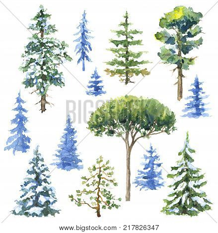 Watercolor painting. Hand drawn illustration. Set of conifers and evergreen trees isolated on white. Snow covered plants sketch.