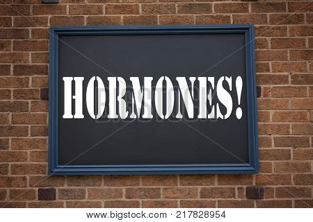 Conceptual hand writing text caption showing announcement Hormones. Business concept for  Hormone Pill written on frame old brick background with space