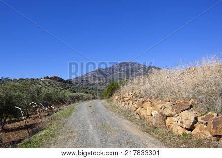 Spanish Arable Fields