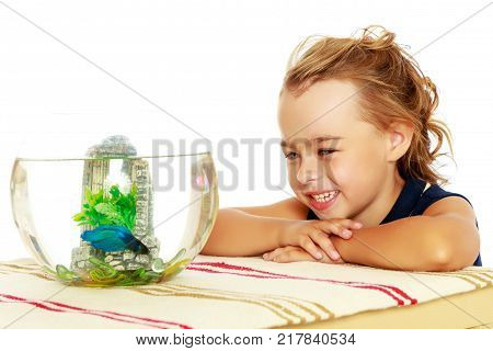 Beautiful small tanned girl, admiring the fish that swims in a round glass tank.Isolated on white background.