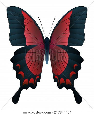 Beautiful butterfly isolated on a white background. Papilio pericles butterfly. 3D illustration