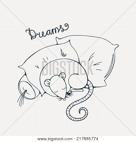 Illustration with a cheerful rat sleeping on a pillows. Coloring page. Vector image.