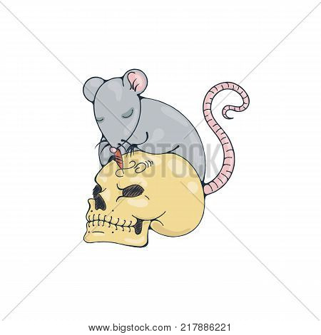 Illustration with rat engraves human skull. Vector image.