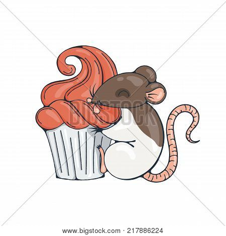 Illustration with cute rat with cupcakes. Vector image.