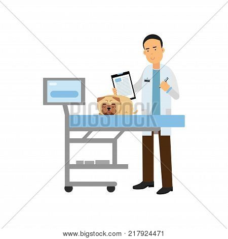 Cheerful male veterinary doctor examining dog in vet clinic, colorful cartoon vector Illustration isolated on a white background