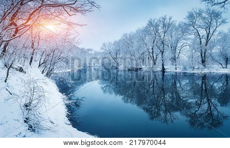 Winter Forest On The River At Sunset. Colorful Landscape With Snowy Trees