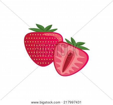 Fresh juicy strawberry isolated on a white background. Colorful half and whole strawberry with a leaf. Perfect for juice or jam. Vector illustration