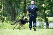 police dog and handler working as a team poster