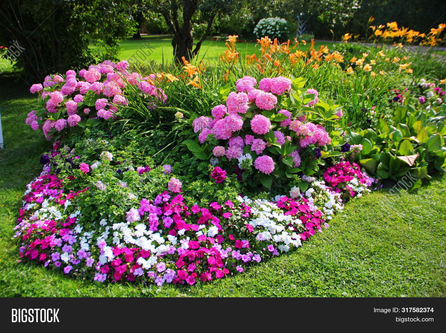 Elegant Flower Bed Two Image Photo Free Trial Bigstock