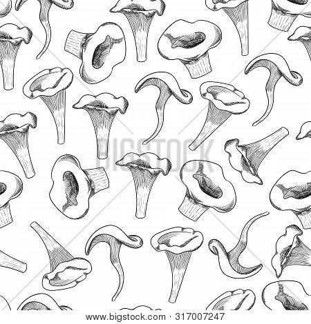 Mushroom Seamless Pattern Hand Drawn Sketch Vector Illustration. Mushroom Shiitake, Fresh Organic Fo