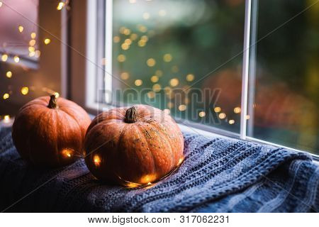 Two Orange Pumpkins On Gray Knitted Plaid Near Window In Daylight Surrounded With Warm Garland Light