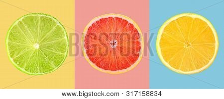 Composition Of Slices Citrus Fruits On Colored Background
