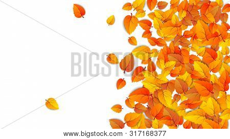 Autumn Advertising Banner With Half Leaves Isolated On White Background For Autumn Fall Sale. Presen