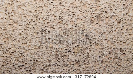 The Porous Texture Of Pumice.background Of Porous Pumice.