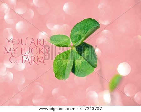 You Are My Lucky Charm - Inspirational Motivation Quote.