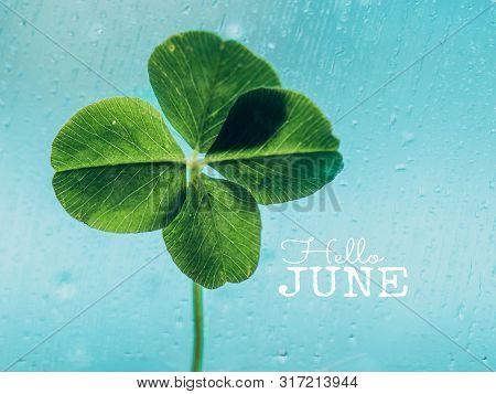 Hello June - Inspirational Motivation Quote
