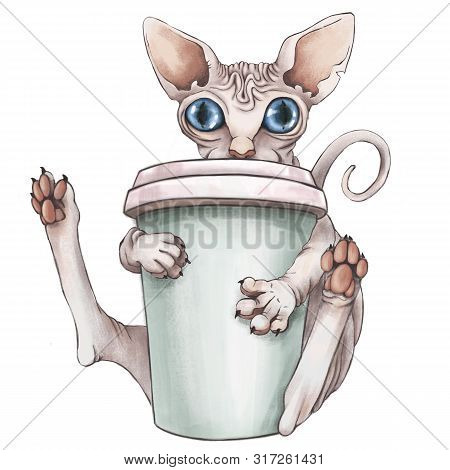 The Bald Pink Sphinx Cat Is Drinking Coffee. Good Morning .cg Illustration. Isolated On White Backgr