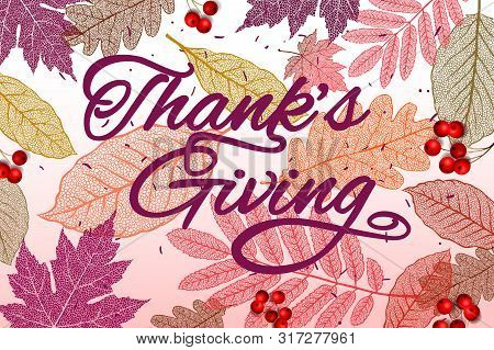 Thanksgiving Holiday Banner With Congratulation Text. Autumn Tree Leaves. Autumnal Design For Fall S