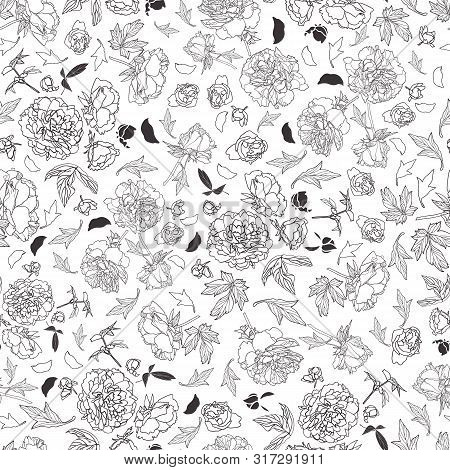 Festive Lineart Peony Blossom Botany Pattern, Black And White Contrast Modern Design. Perfect For Wa