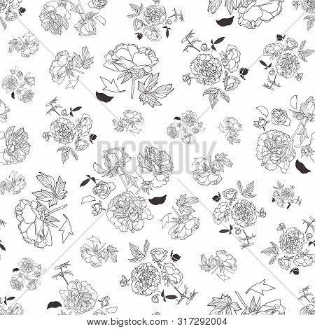 Festive Lineart Peony Blossom Botany Pattern, Black And White Contrast Modern Design. All Over Print