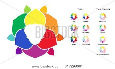 Color Wheel With Hue, Tint, Shades Variations. Primary, Secondary And Supplementary Color Diagram. C