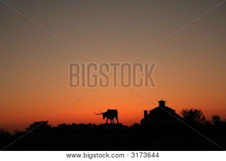 Silhouette of the bull in Rakvere. Estonia poster