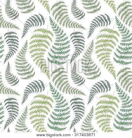 Fern Backdrop. Hand Drawn Seamless Pattern With Sketch Style Fern Branch. Green On White, Vector Bac